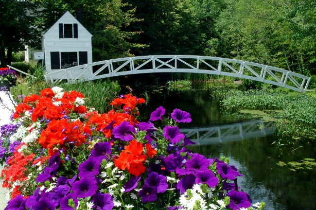 Somesville Maine, bridge and flowers